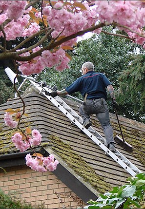 Our staff cleaning the moss from a roof in Hamworthy near Poole